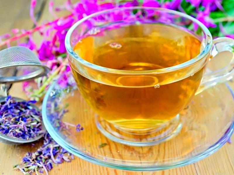 копорский чай для похудения отзывы